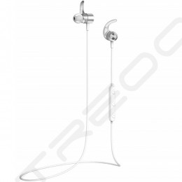 AVIOT WE-D01c Wireless Bluetooth In-Ear Earphone with Mic - Silver