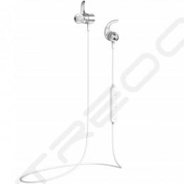 AVIOT WE-D01c Wireless Bluetooth In-Ear Earphone with Mic - Silver