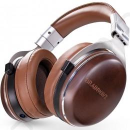Brainwavz HM100 Over-the-Ear Headphone