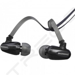 Brainwavz S5 In-Ear Earphone with Mic