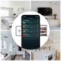 Arylic A50+ Multi-Room Wireless Network Hi-Fi Speaker Amplifier